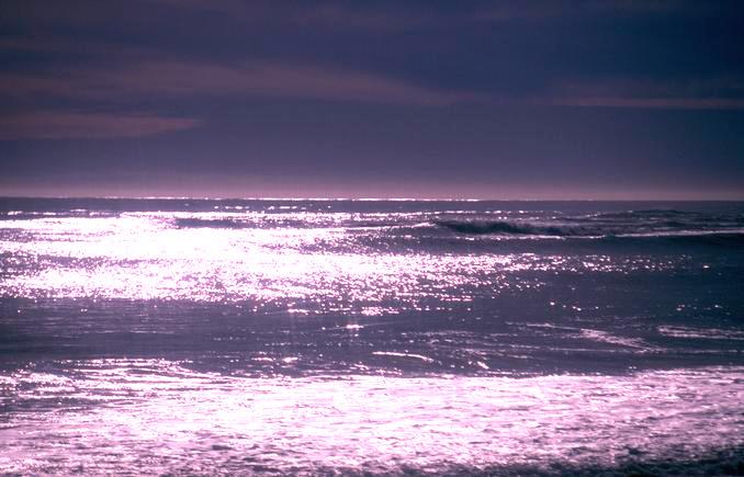 Ocean Evening