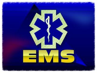 Ems-3-logo-poster